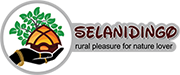 Selanidingo